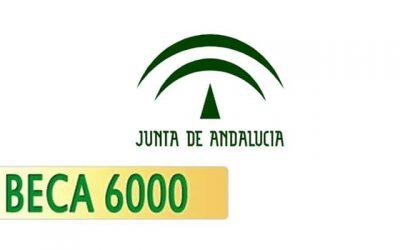 BECA 6000. PROPUESTA DE RESOLUCIÓN PROVISIONAL